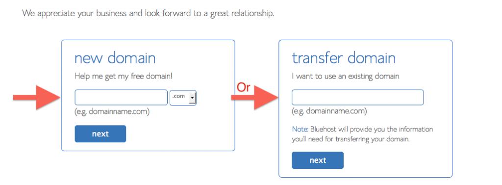 Bluehost - Choose Domain Name