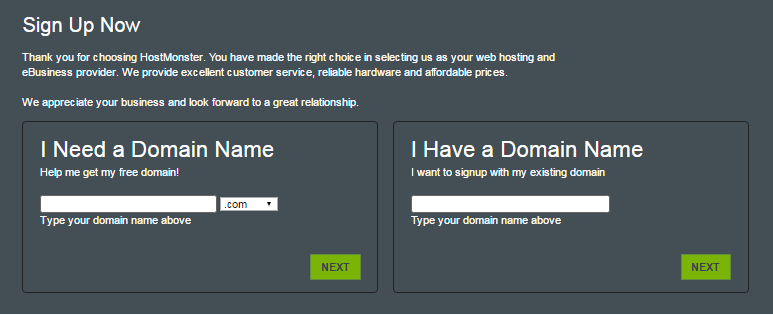 Hostmonster - Choose Domain